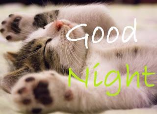 good night cute cat images