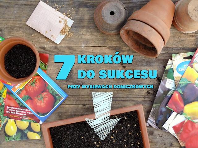 domowy wysiew warzyw na rozsadę