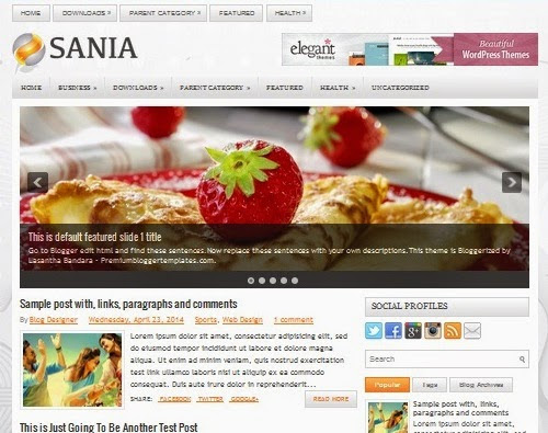 Sania Responsive Blogger Template