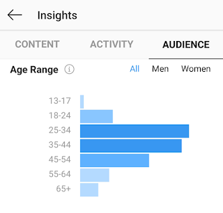 Example of Instagram audience insights