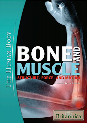 Bone and Muscle Structure, Force & Motion