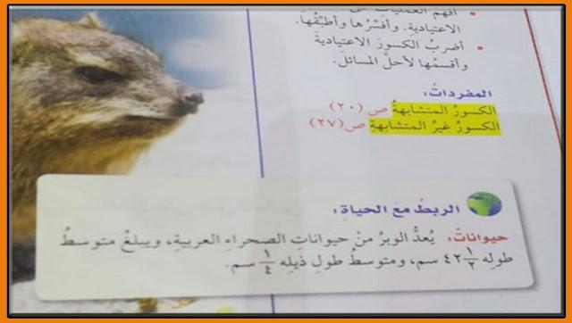 ماهو حيوان الوبر .ذيل الوبر يقود مواطن لأكتشاف خاطئ فى كتاب الرياضيات ذيلة ربع سنتيمتر.