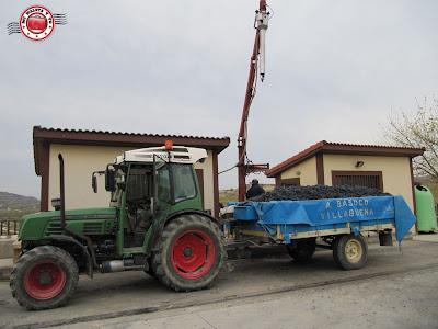 Recepción de uva en Bodegas Luis Cañas