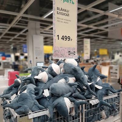 Стоимость Акулы в магазине