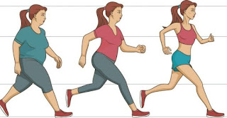 Walk To Lose Weight By Length And Weight