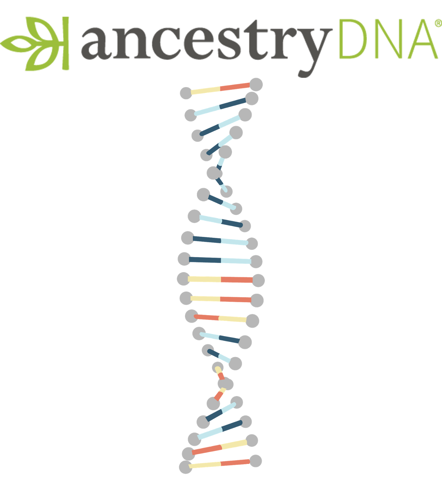 Dna and ancestry : Oil change wilmington nc