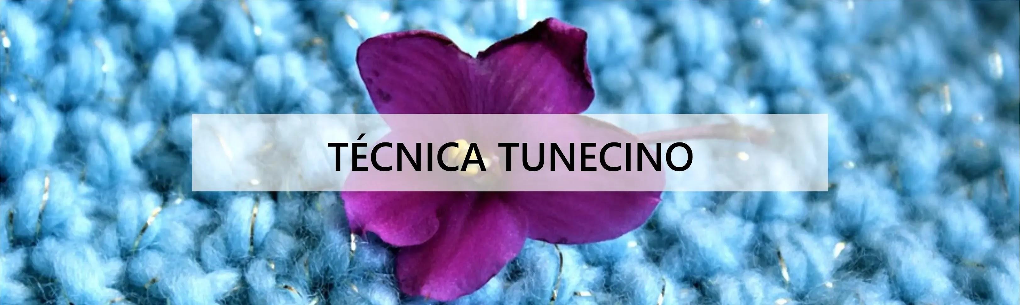 Técnica Tunecino