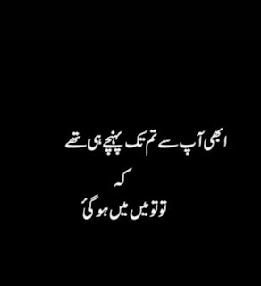 Funny Poetry in Urdu, Funny Quotes in Urdu