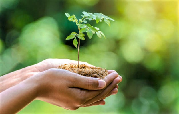World Environmental Protection Day