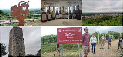 Gattinara vini