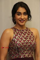 Actress Regina Candra Latest Stills in Maroon Long Dress at Saravanan Irukka Bayamaen Movie Success Meet .COM 0039.jpg