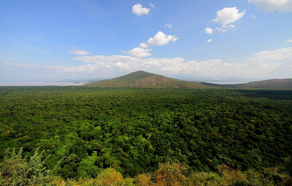 Podróż po Etiopii - część 21 - Wysoko w górach odwiedzamy plemię Dorze.