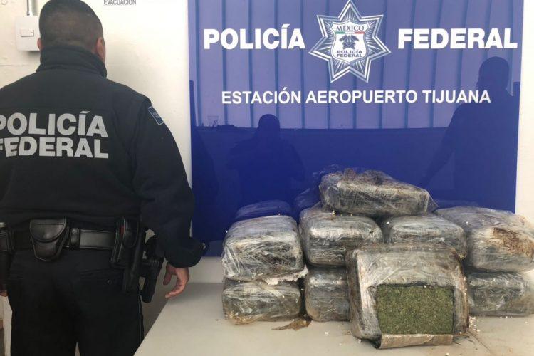 PF asegura 37 kilos de marihuana en paquetería de Aeropuerto de Tijuana