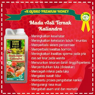 Jual Madu Al Qubro Kaliandra, Produsen Madu Al Qubro Premium Kaliandra