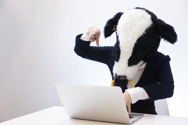 データベースにSQLを発行する牛