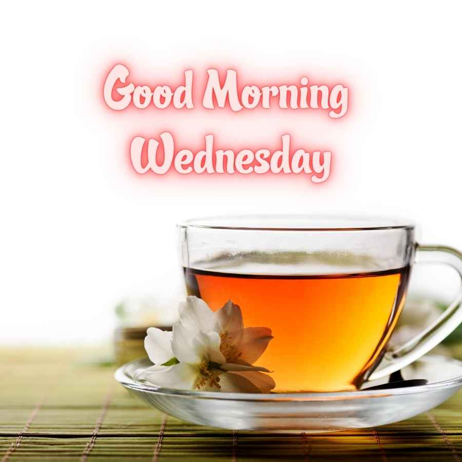 good morning and happy wednesday images