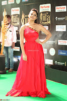Anasuya in Red Single Shoulder Sleeveless Gown at IIFA Utsavam Awards 2017  Day 2  Exclusive 17.JPG