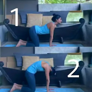 Top-5-yoga-back-stretches-for-lower-back-pain-Relief