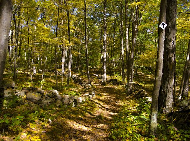 Jump Hill Preserve - Aspetuck Land Preserve - Easton, CT