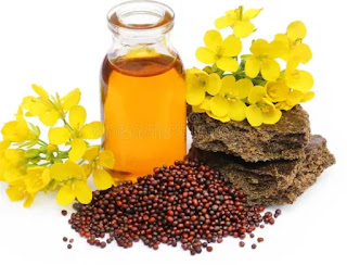 Mustard oil,health benefits of Mustard oil,top 6 benefits of Mustard oil