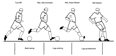 Biomechanics For Soccer The Instep Kick