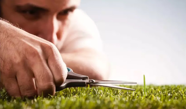 man cutting one small strand of grass in field
