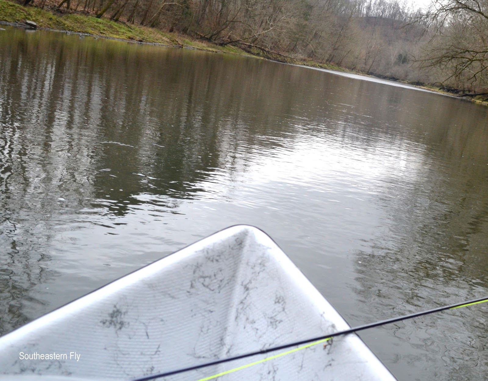 Southeastern fly caney fork river fishing report for Tims ford lake fishing report