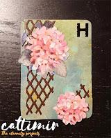 52 cafe cards Hydrangea