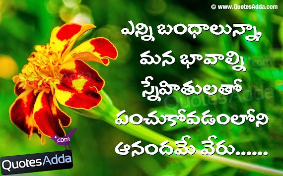 Best Of Selfish Fake Friends Quotes In Telugu On Quotes About Life