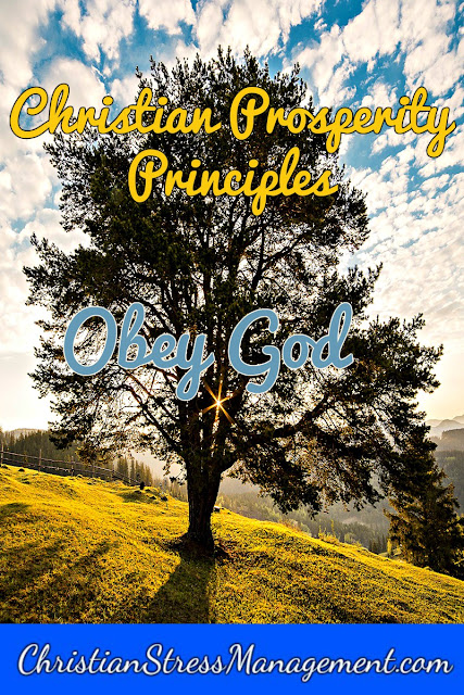 Christian Prosperity Principles: Obey God