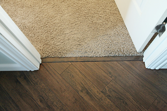 Doorway Carpet Strip Transition From Tile To In