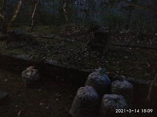 Makam RA. Nyai Kemuning Dalem Agung