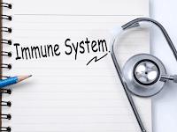 Kiat Menjaga Sistem Imun Tubuh Selama Pandemi dari SehatQ.com