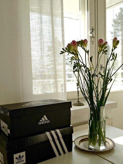 kukka, maljakko, kenkälaatikko, adidas