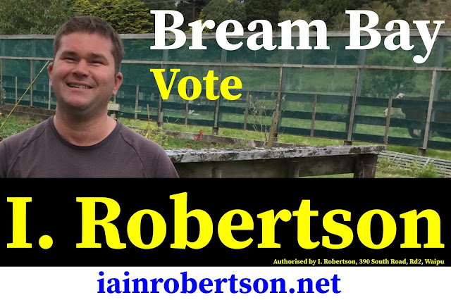 Candidate Iain Robertson Whangarei District Council