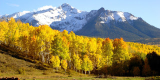 A snow-covered mountain with a grove of Aspen trees in the foreground. Off Last Dollar Road in southern Colorado.