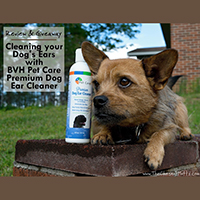 BVH Ear Cleaner Review