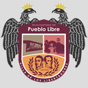 Camaras de Videovigilancia, Municipalidad de Pueblo Libre, Sistema de Televigilancia Publica