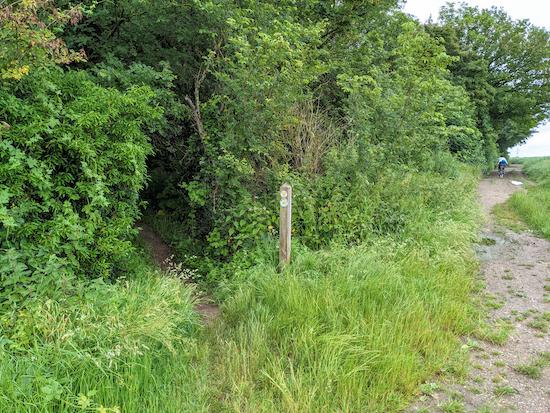 Hunsdon footpath 22 heading into Black Hut Wood