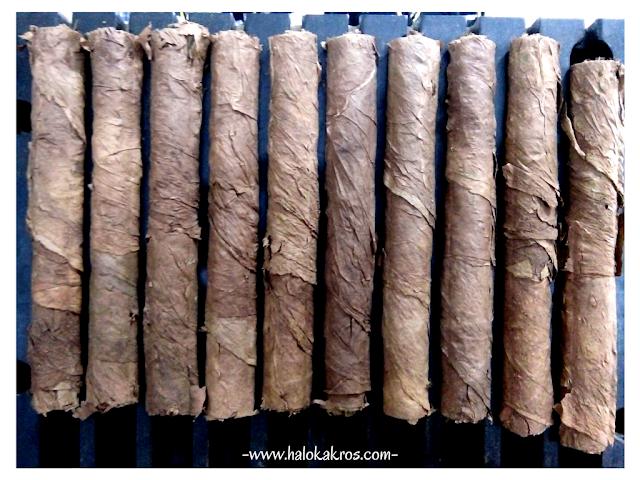bin-cigar