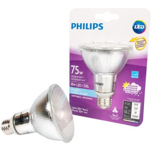 Philips LED PAR30L Daylight bulb