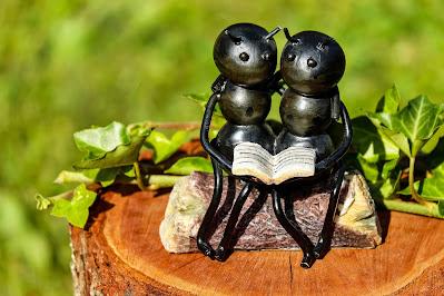 Formigas. As cigarras e as formigas brasileiras
