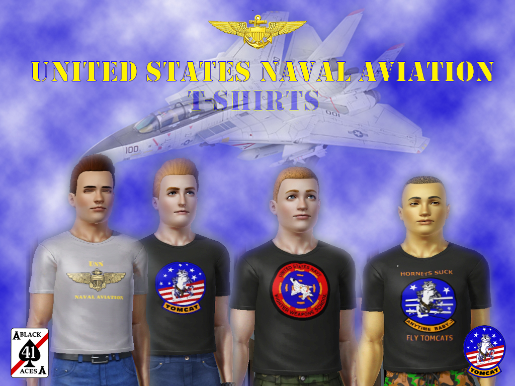 USNNAVAIRCollection.jpg