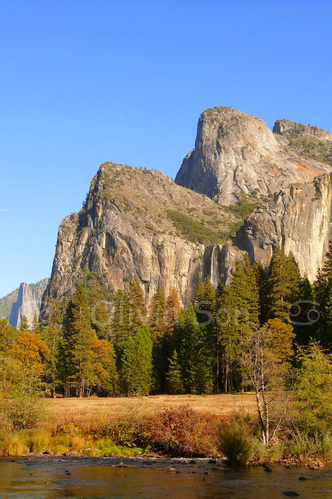 autumn yosemite park