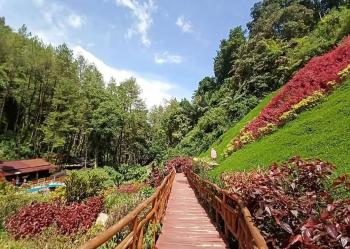 Srambang Park Ngawi, Kombinasi Wisata Alam nan Modern