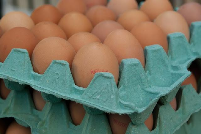 Peluang Usaha Agen Telur Ayam yang Menjanjikan