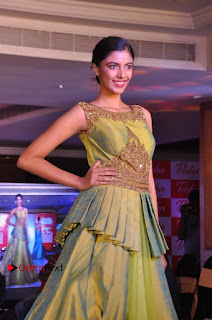 South Indian Celebrities Pos at Love For Handloom Collection Fashion Show  0106.jpg