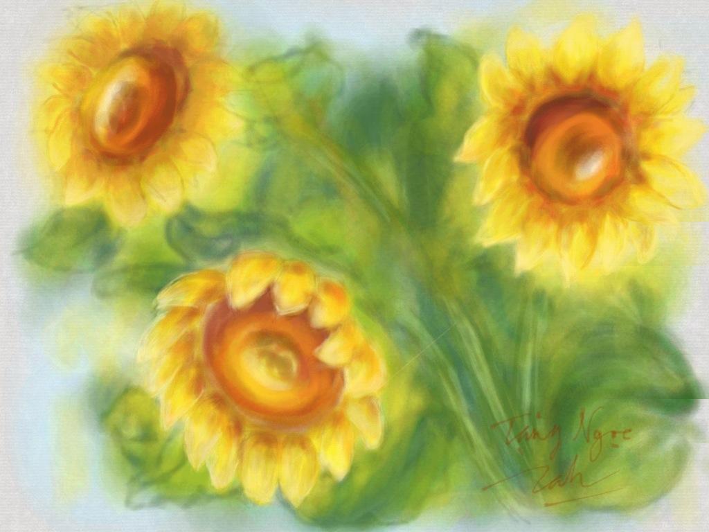 Bức Hoa Hướng Dương này có nhiều kỉ niệm với mình... Loài hoa này, được nhiều người yêu quý quá! Mai mốt tặng hoa cho ai, chắc tui mua hoa này cho ...