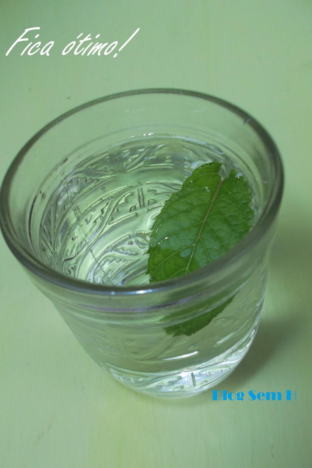 chá de quebra-pedra benefícios e efeitos colaterais