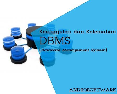 Kelebihan dan Kelemahan Database Management System